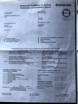 lani's OFA Certification