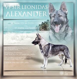 VF Sir Leonidas Aleksander.jpeg