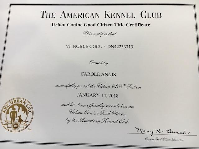 noble cgc urban