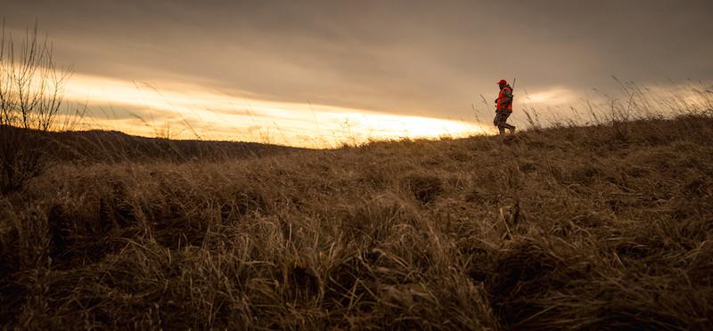 Ohio Hunter on the ridge