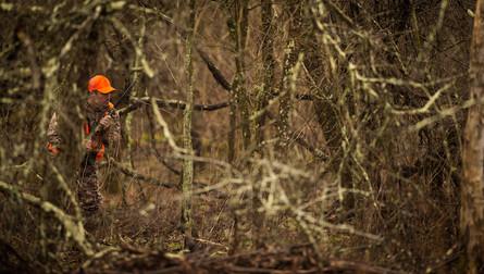 Hunter in Tangle