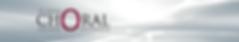 EPCS Web header.png