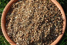 Mélange de graines d'herbes médicinales pour chevaux et autres 1kg