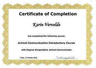 animal communication course.jpg