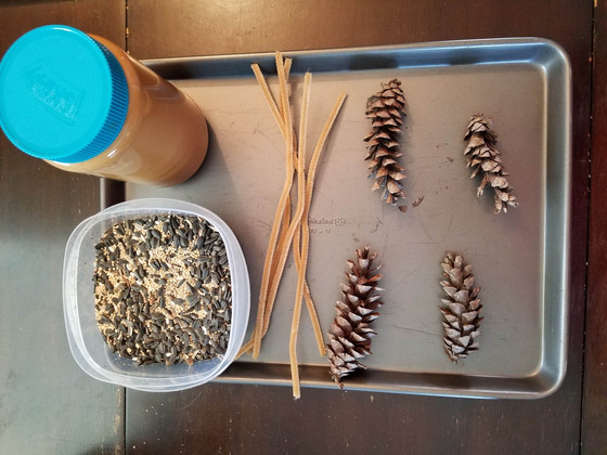 Peanut butter, pine cones and birdseed. What can go wrong?