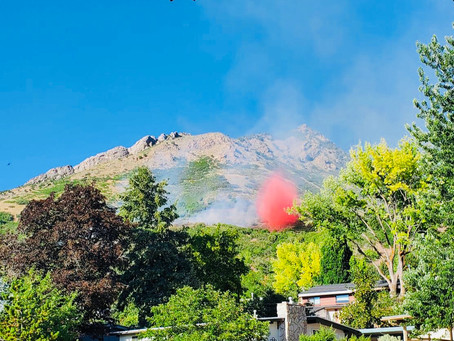 Wildfire Prevention - Home Ignition Zone Checklist