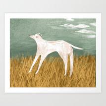 dog-in-field-prints.jpg