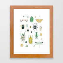 insects3147834-framed-prints.jpg