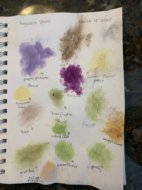 Found Pigments Assignment