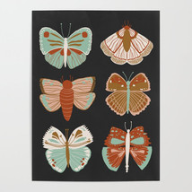 butterflies3213632-posters-1.jpg