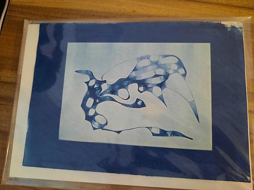 Water Bird Series