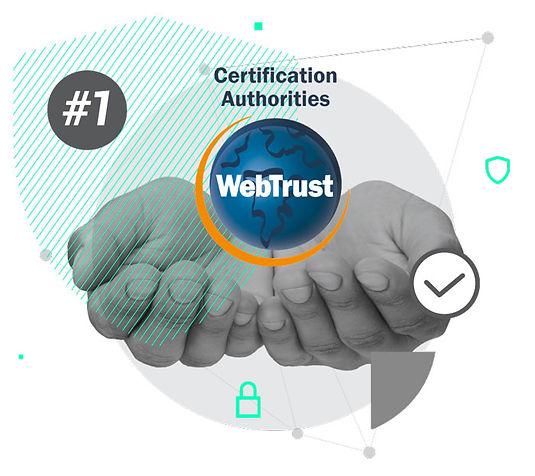 VIDA-WebTrust.jpg