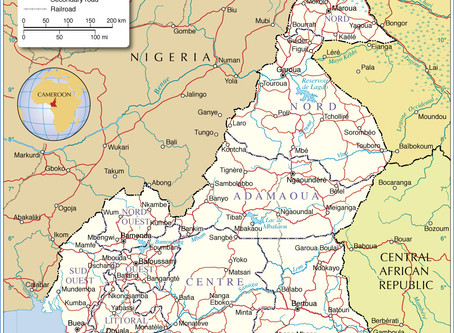 Cameroon; Briefing on the Human Rights Situation
