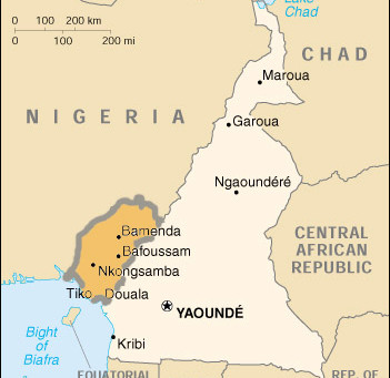 Reports of Genocide and Chemical Weapons in Cameroon 22.11.2018
