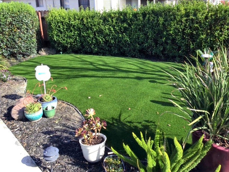 How to install turf
