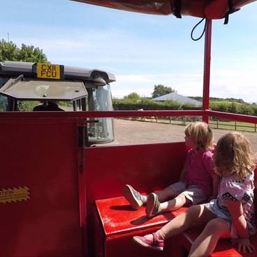 Tractor rides at 11:00, 1:30 and 4:00 daily.