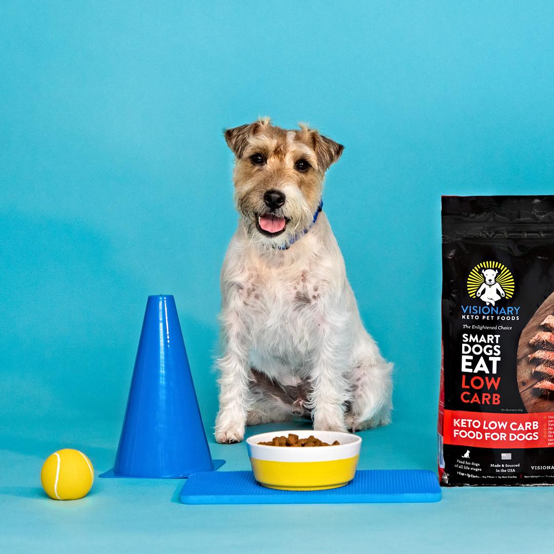 Visionary Pet Food