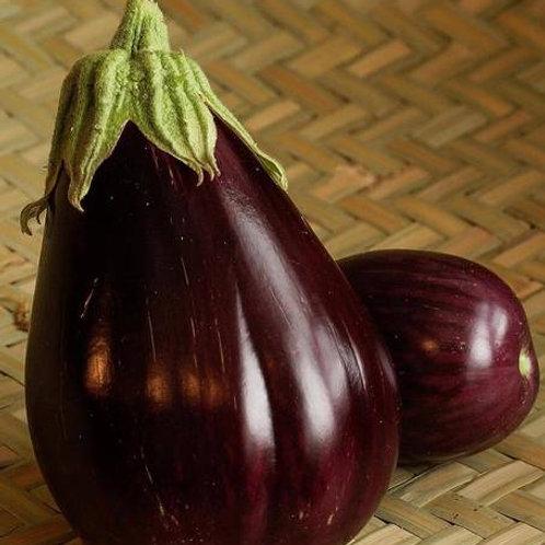 Black Beauty Organic Eggplant