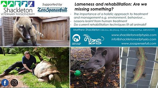 Zoospenseful - webinar.png
