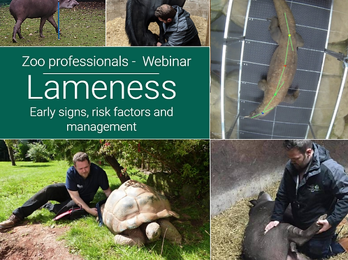 Webinar 1: Lameness and rehabilitation - Early signs and risk factors
