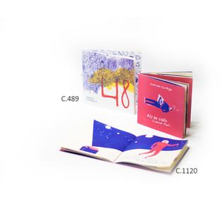 LIVRO 48 | RÉS DO CHÃO