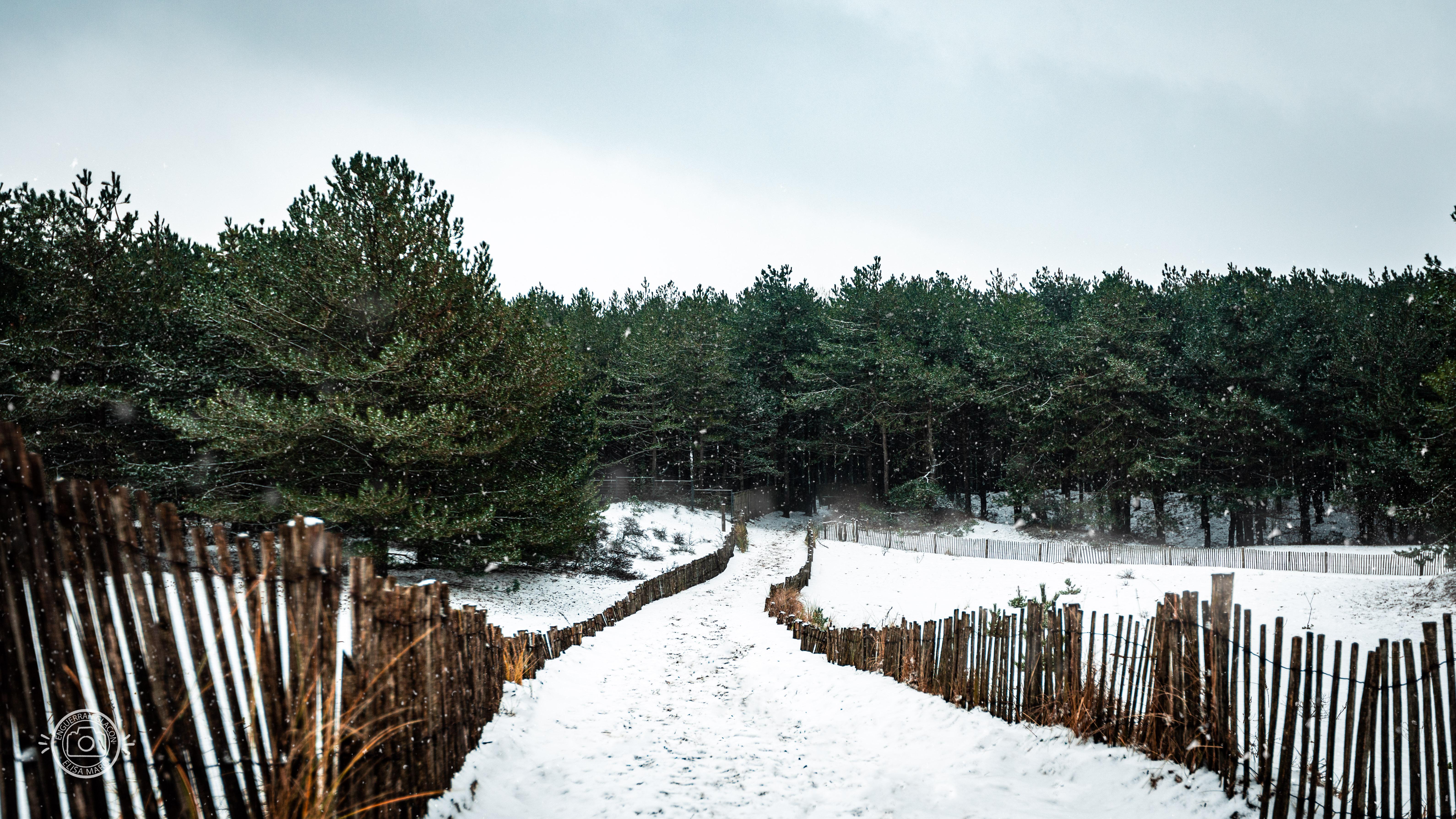 Le Touquet sous la Neige - 1