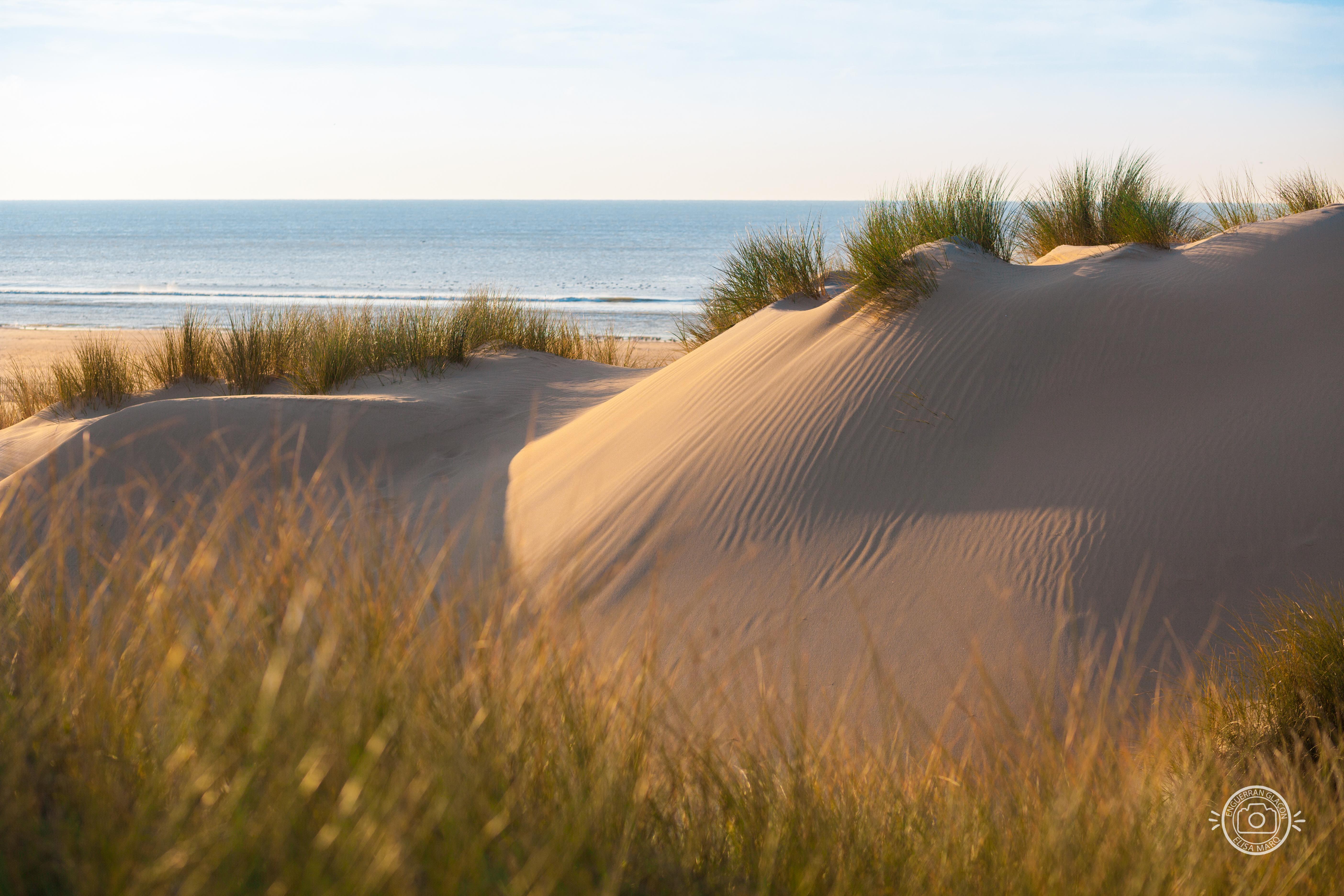 Dunes - le Touquet