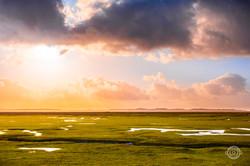Prés Salés de la Baie de Somme, au Lever du jour