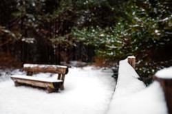 Le Touquet sous la Neige - 3