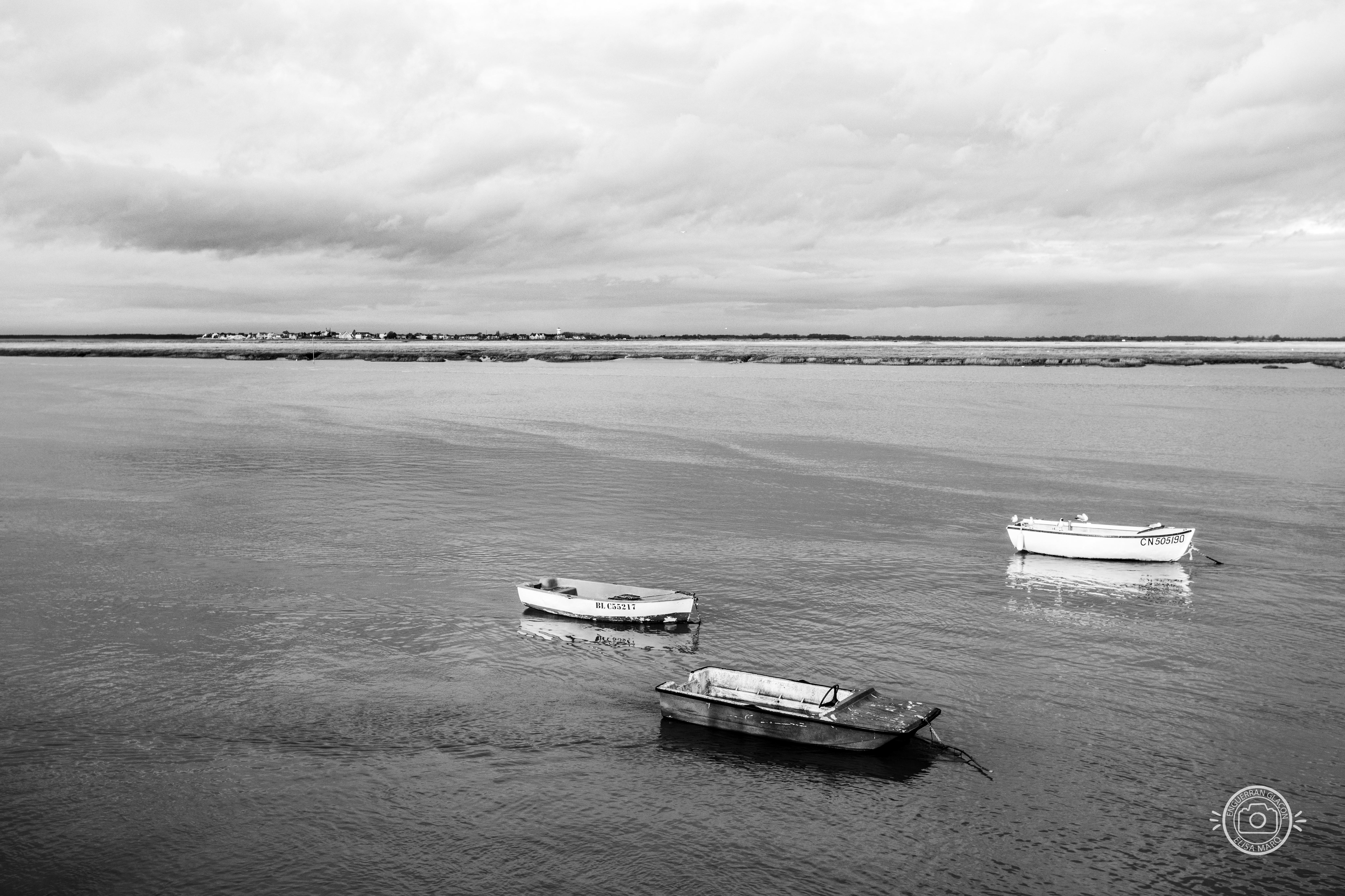 Baie de Somme - n°1
