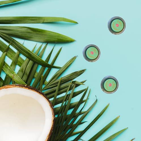 Coconut Breeze Lip Balm