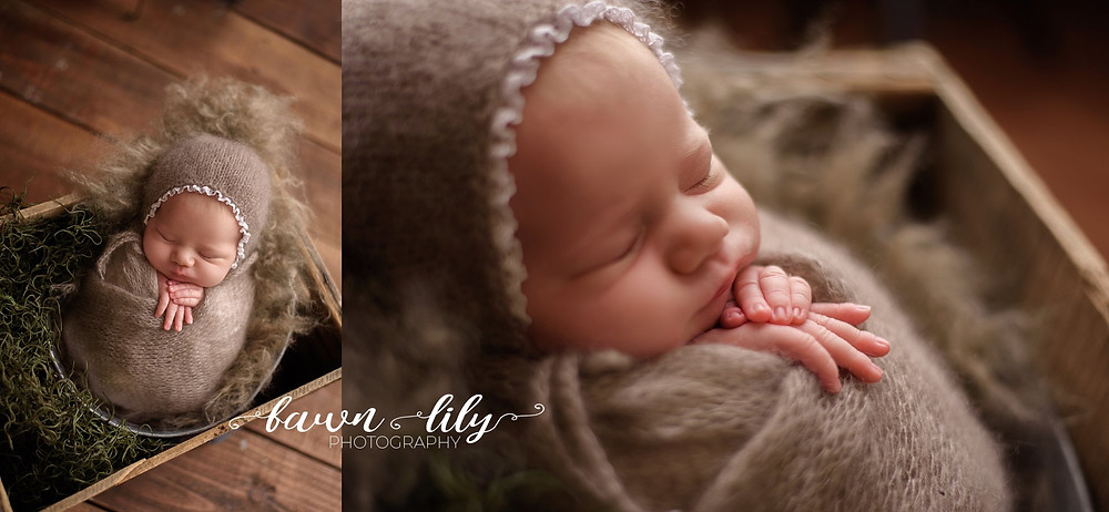 Sidney BC Newborn Photographer, Baby in a box, Posed Newborn Photography, Fawn Lily Photography