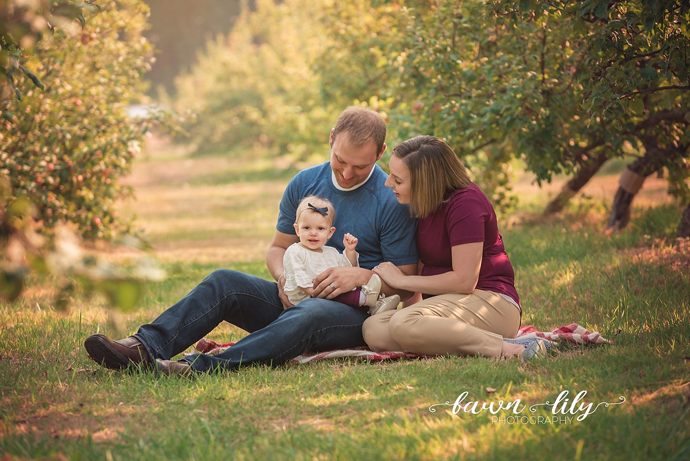 Family photo in an apple orchard, family photo, how to convince your husband to take family photos