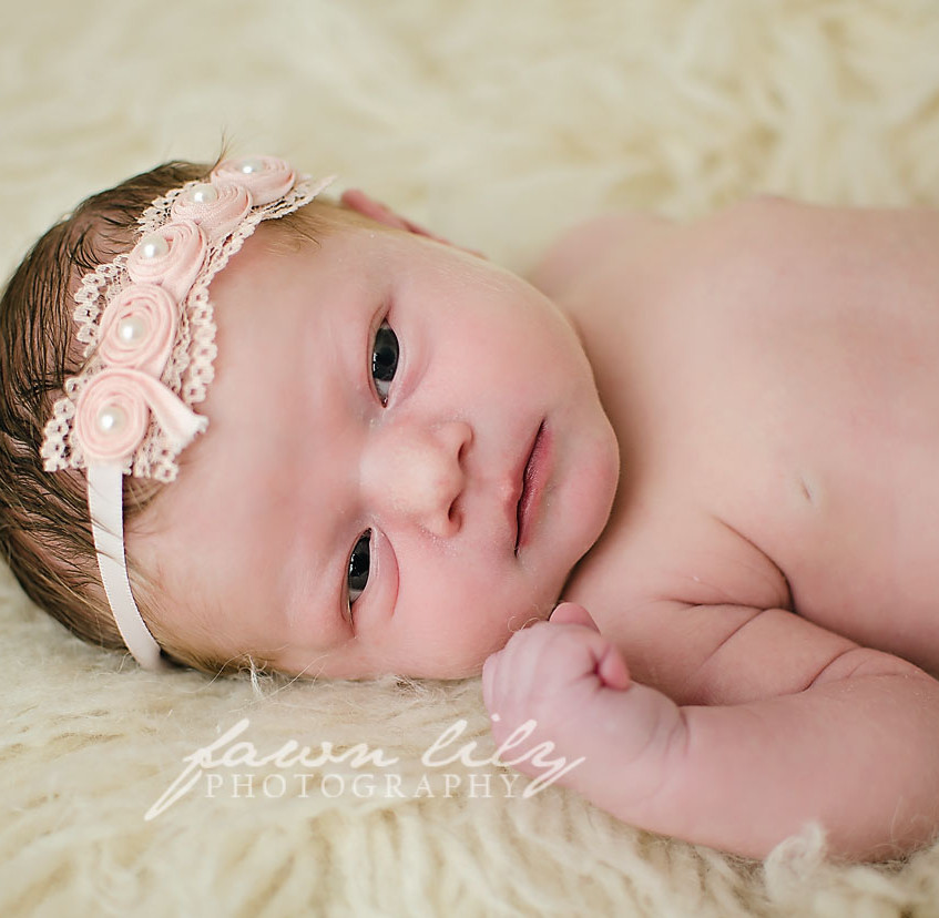 Fawn Lily Photography Newborn 17