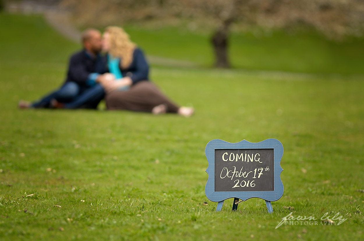 Fawn Lily Photography Maternity 19