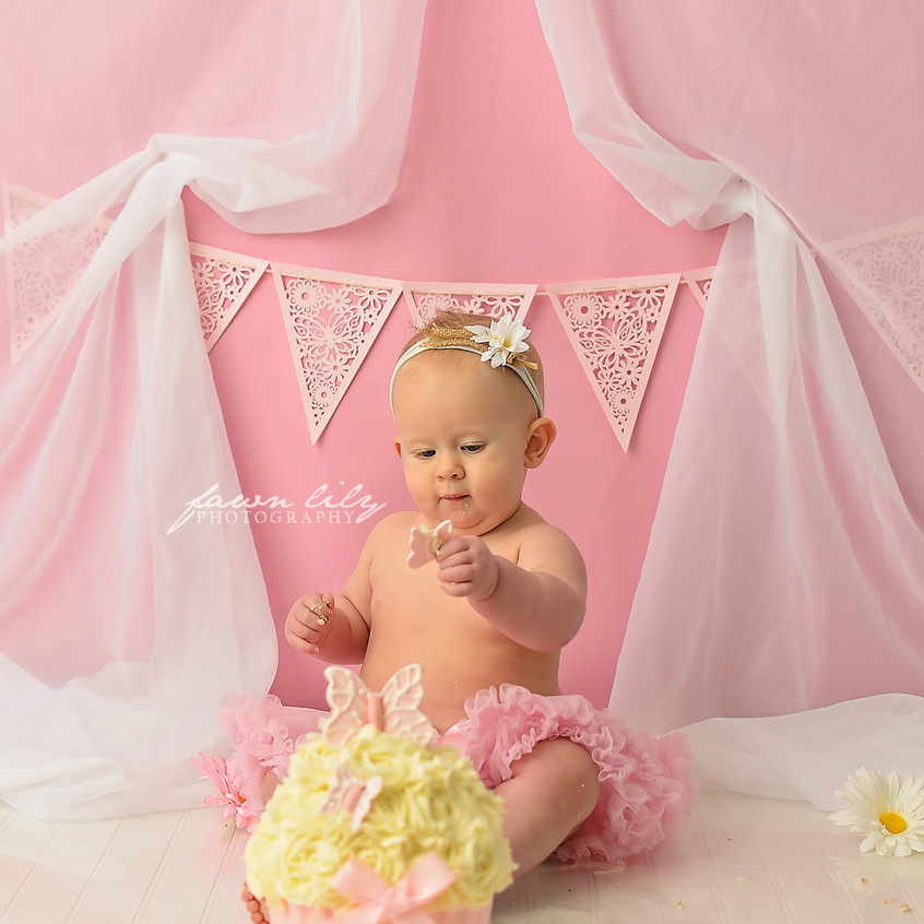 Fawn Lily Photography Cake Smash 14