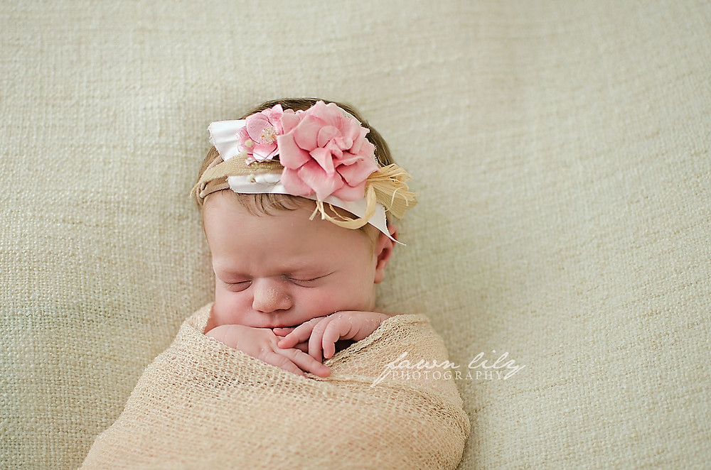 Fawn Lily Photography Newborn 1