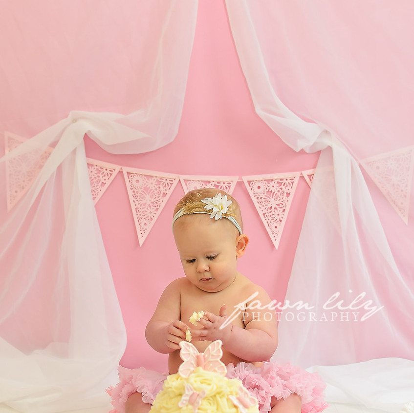 Fawn Lily Photography Cake Smash 19