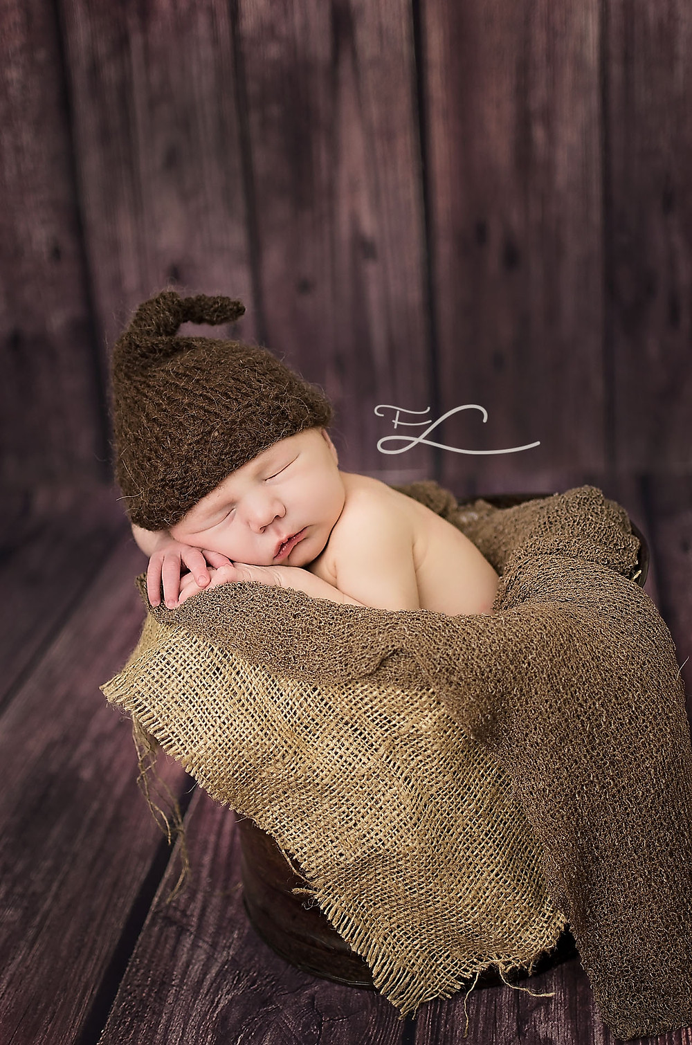 Sidney BC Newborn Photographer Fawn Lily Photography
