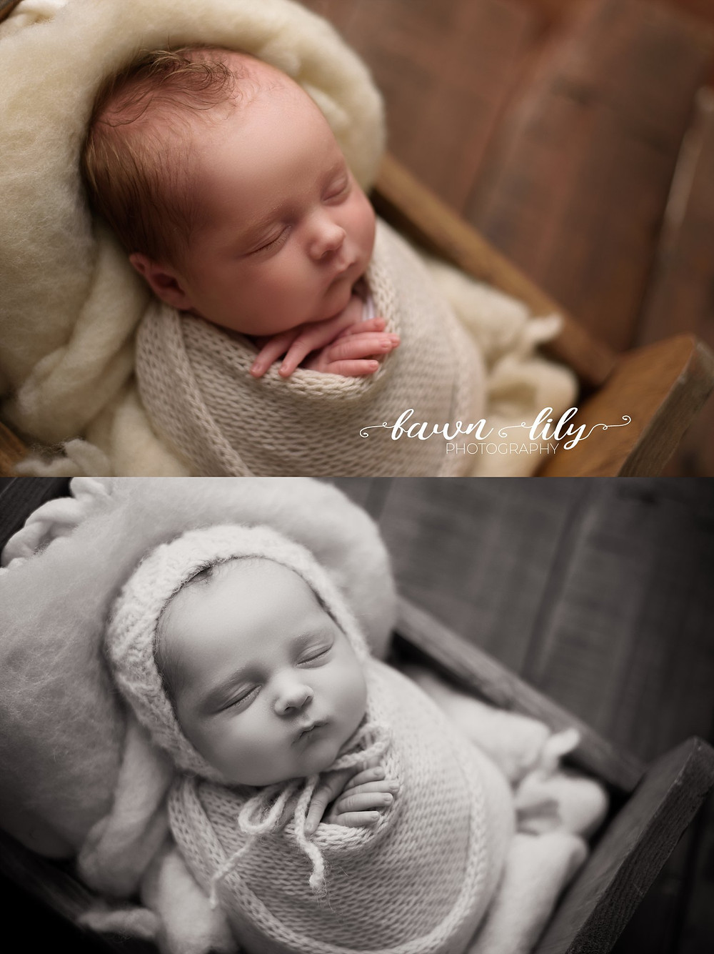 Fawn Lily Photography, Victoria BC Newborn Photographer