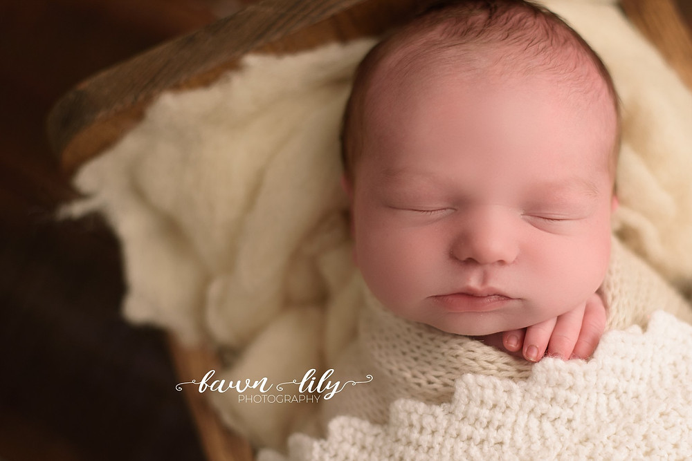 What kind of newborn session is right for you? Studio Newborn Photography, Victoria BC