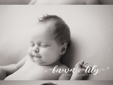 The Newborn Options - What Kind of Newborn Photography is Right for You? Fawn Lily Photography