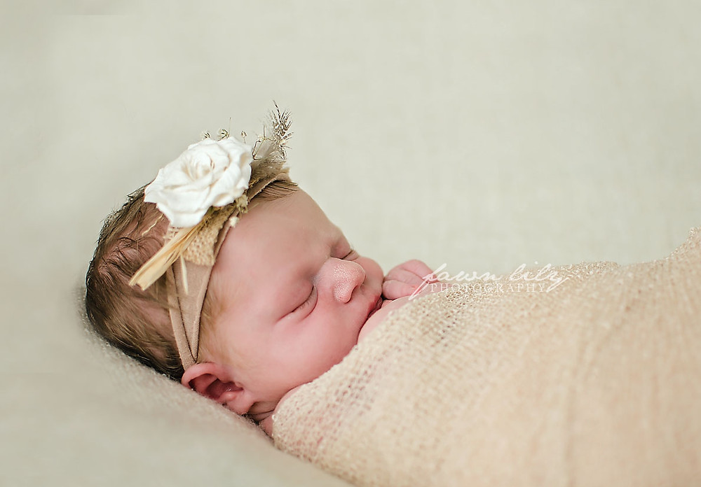 Sidney BC Newborn Photography Fawn Lily Photography