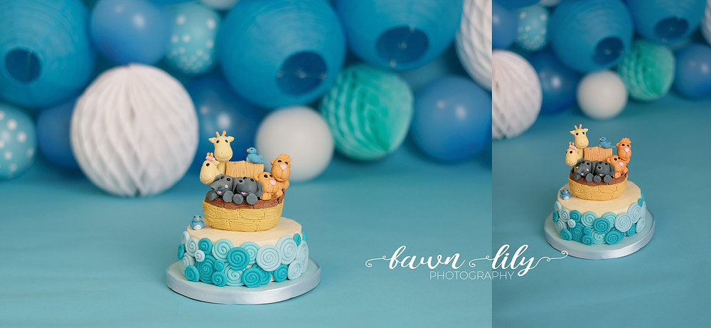 M an M Sweet Treats, Noah's Ark Cake, Fawn Lily Photography, Victoria BC Cake Smash Photographer