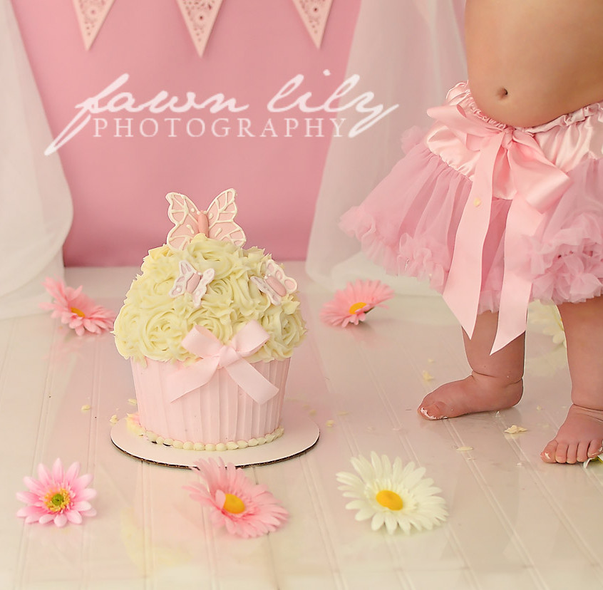 Fawn Lily Photography Cake Smash 16
