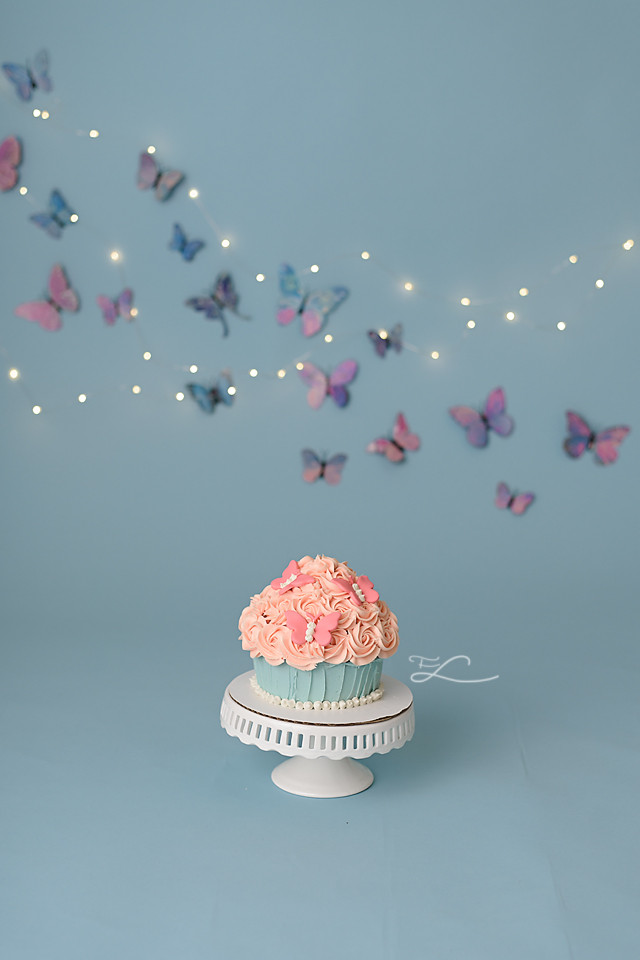 Victoria BC Cake Smash Photographer, Butterfly Cake Smash, Smash Cake, Butterfly theme, Fawn Lily Photography, Victoria BC