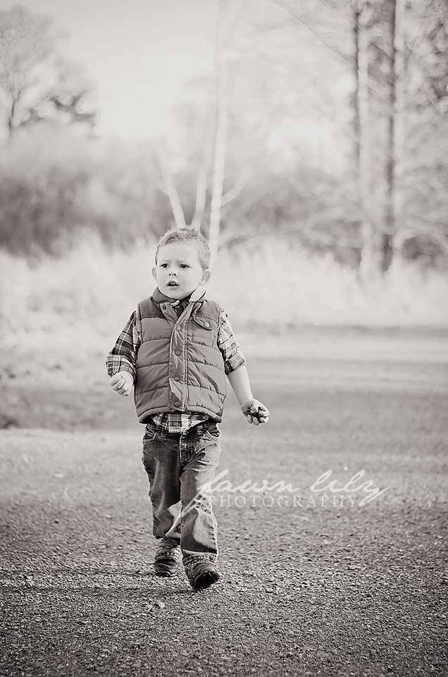 Fawn Lily Photography - Sidney BC Photographer