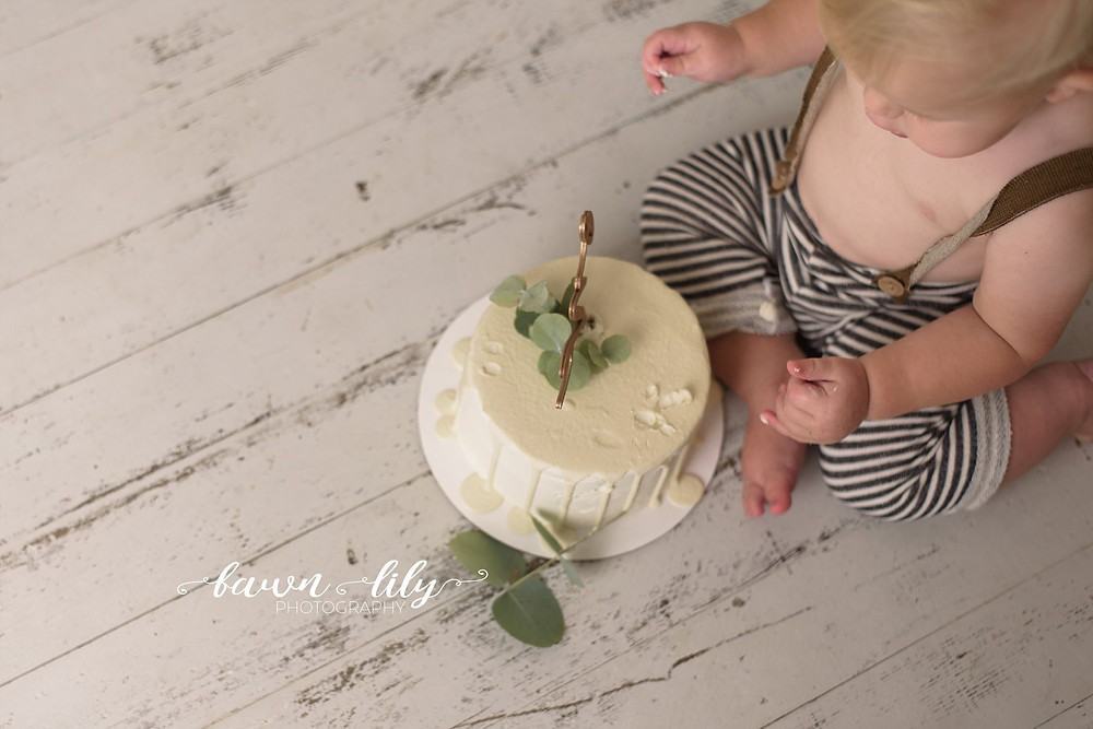 Cake Smash Photographer, Victoria BC, Baby Photographer, Cake