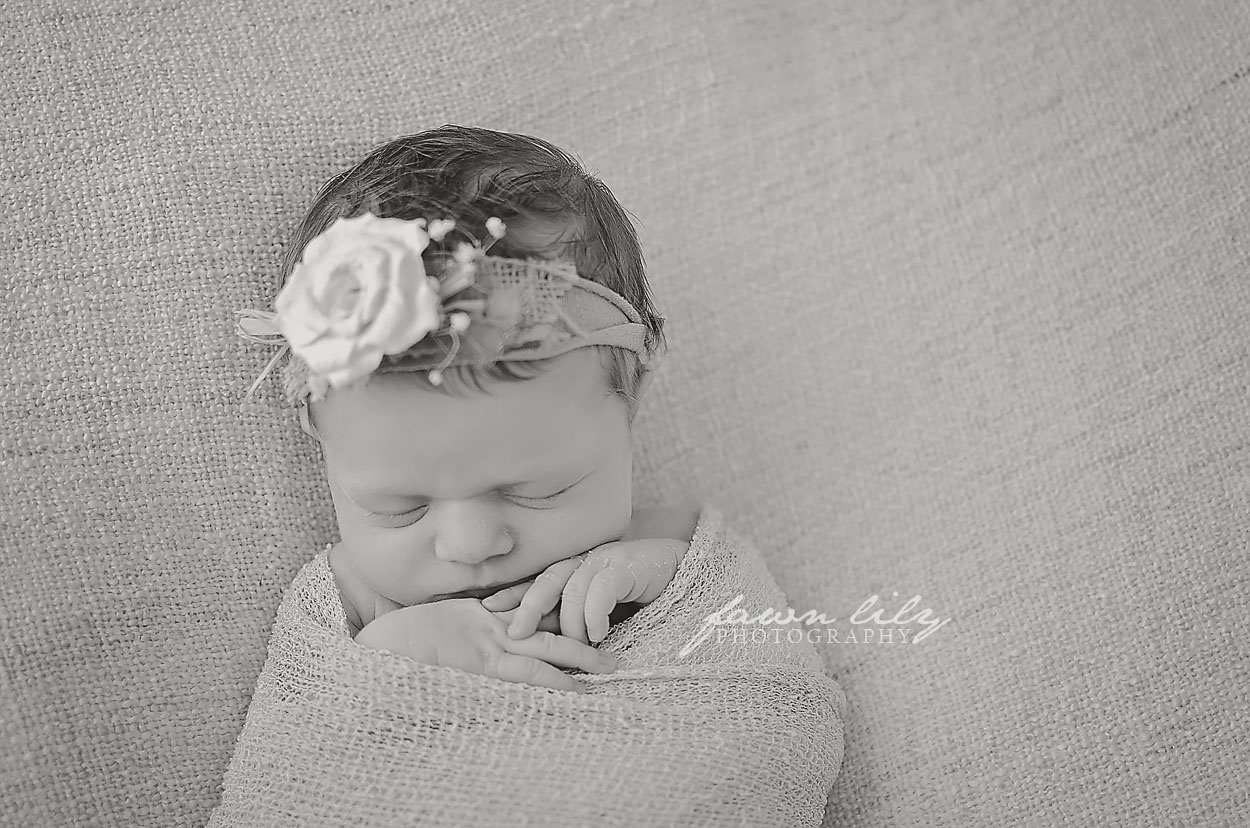 Fawn Lily Photography Newborn 2