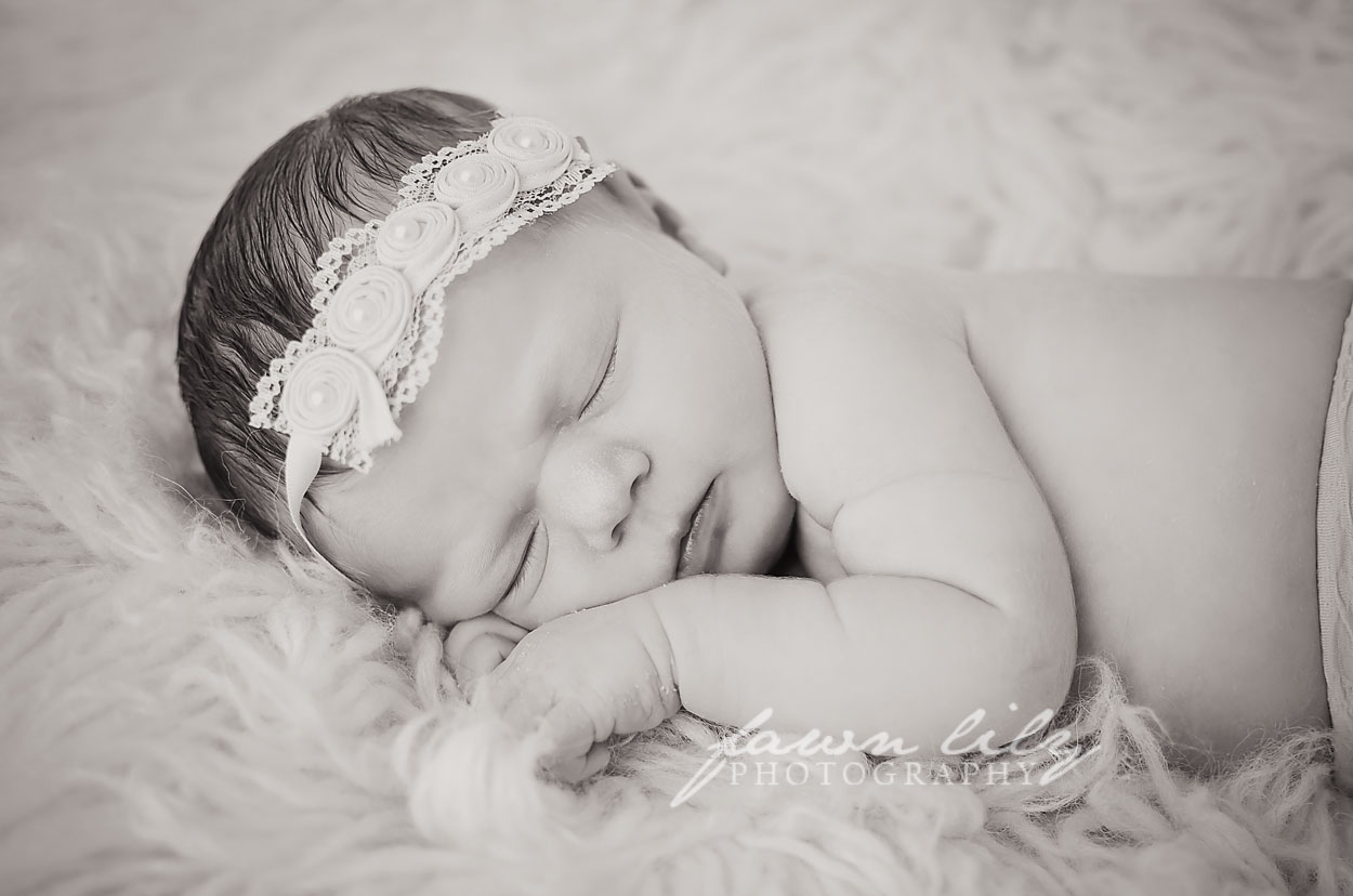 Fawn Lily Photography Newborn 16